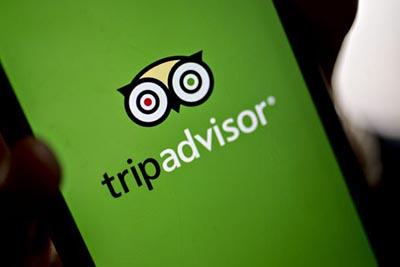 TRIPADVISOR-report