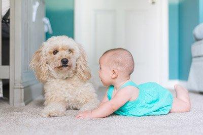 cagnolini-e-bambini